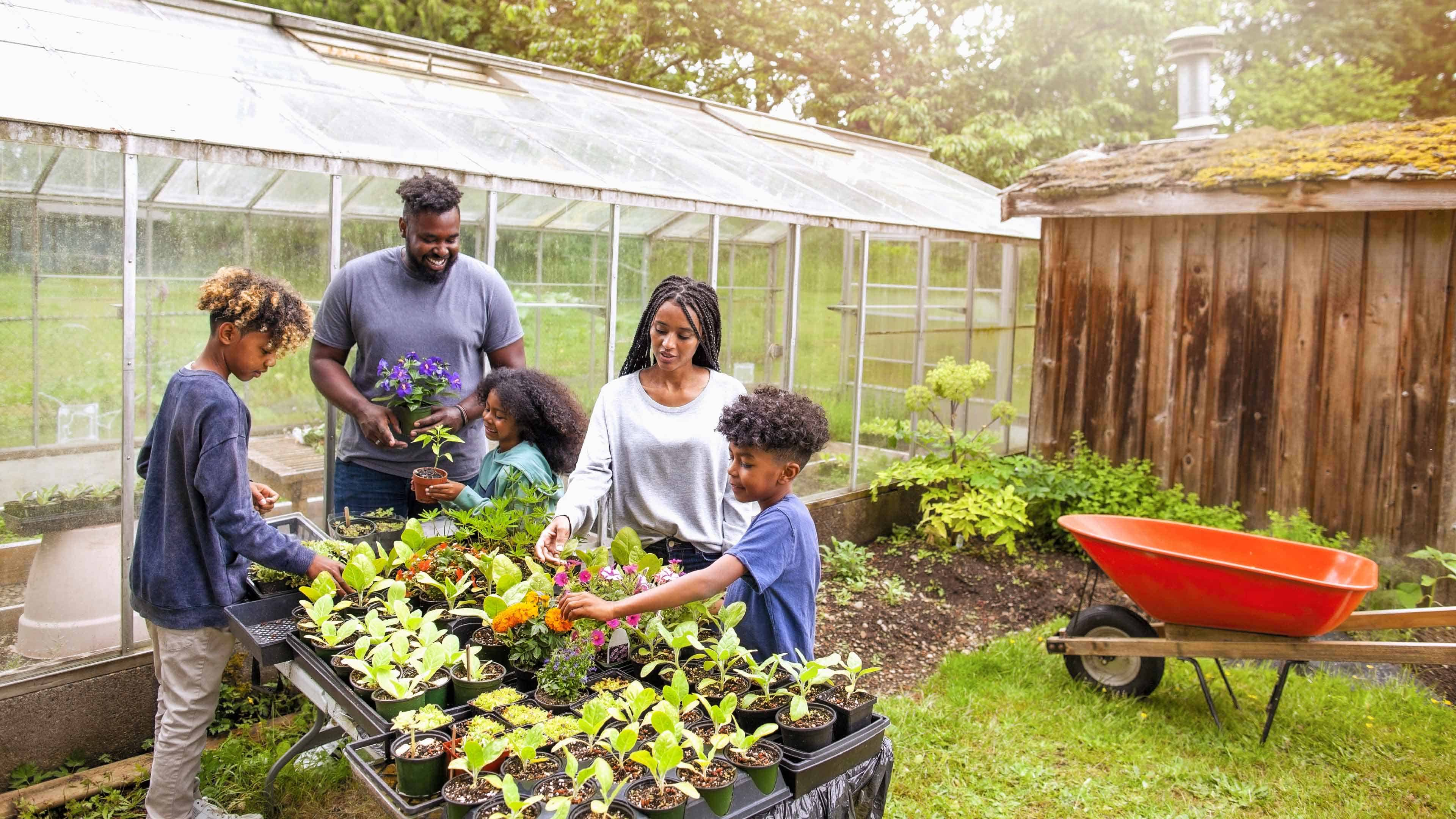 A family planting a garden beside their diy greenhouse