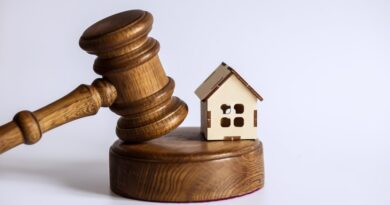 hammer and gavel| What to expect at your first auction