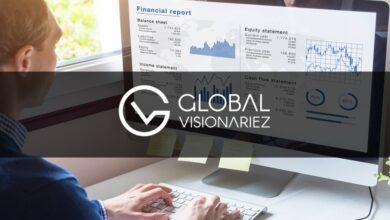 Global Visionariez