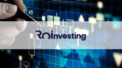 Roinvesting Reseña