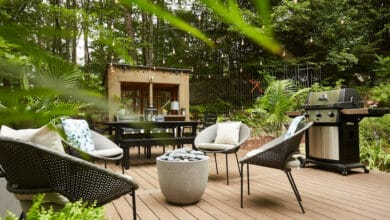 Photo of 4 Ways To Take Pride In Your Backyard
