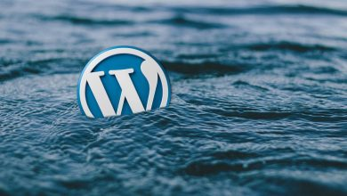 Photo of WordPress or Drupal – The CMS that will work for you in 2019