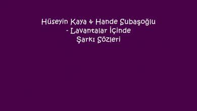 Photo of Hüseyin Kaya & Hande Subaşoğlu – Lavantalar İçinde Şarkı Sözleri