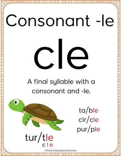 consonant le poster for the classroom with definition, picture of a turtle, and example words