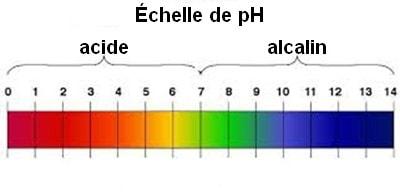 Echelle de pH