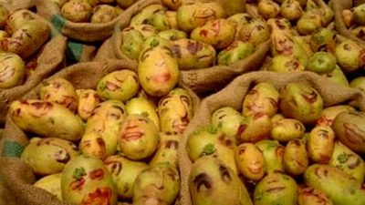 Image: Bags of potatoes with faces drawn on them