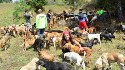 Image: Dogs and Volunteers at Territorio de Zaguates
