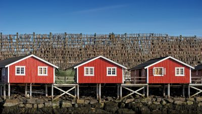 Image: Town with cod hanging to dry in the behind houses