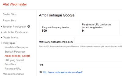 Optimasi Website untuk Image dan Video | Google SEO