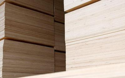 NO-NAIL BOXES is defining win-win co-operation with their suppliers