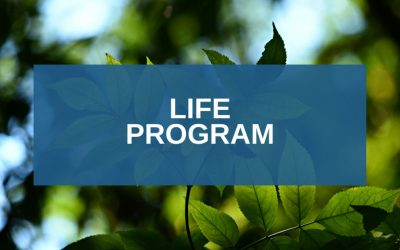 Life Program: funding for the environment and climate action