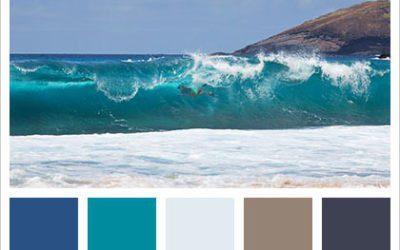 Spring & Summer Color Palettes