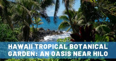 Hawaii Tropical Botanical Garden: A Big Island Oasis Near Hilo