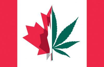 Canada Kampt Met Gebrek Aan Wiet Na Legalisering. (slider)