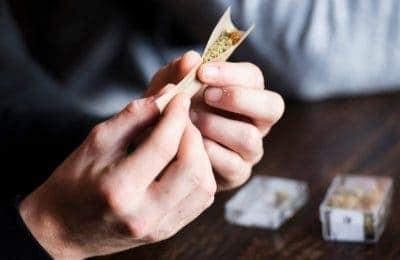 2018-12-18-Istraživanje Isključenje korova Tilburg još nije završeno: stranci mogu da počnu s pravom 2019 u kafićima