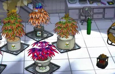 2019-05-10-Rastujte svoj Cannabis sa Game Weedcraft Inc