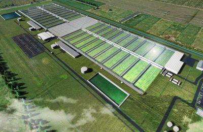 2019-08-23-Cannatrek gradi fabriku mega kanabisa za mediteran u Australiji