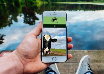 Sitio web Vamos Vaca