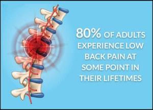 lower back pain statistics