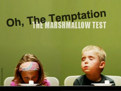 Image: The Marshmallow Test - 'Oh the tempation'