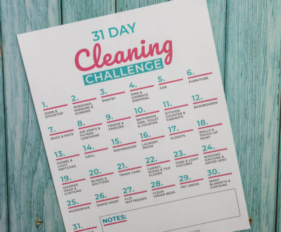 Spring Cleaning Challeng