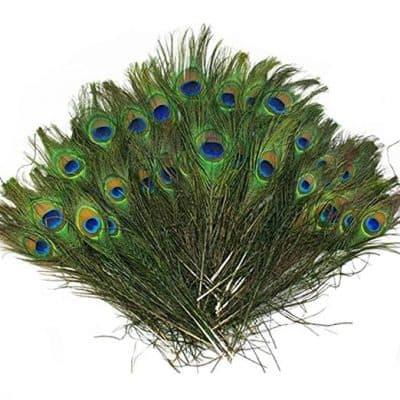 Vivian Beautiful Natural Peacock Feathers