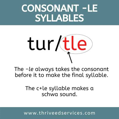 example and definition of the consonant le syllable using the word turtle