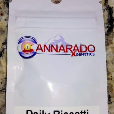 CANNARADO_GENETICS_DAILY_BISCOTTI_LUSCIOUS_GENETICS