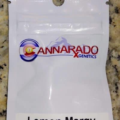 CANNARADO_GENETICS_LEMON_MARGY_LUSCIOUS_GENETICS