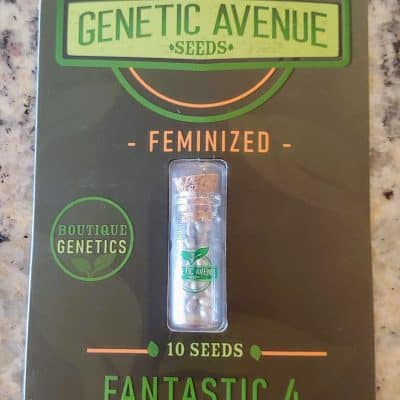GENETIC_AVENUE_SEEDS_FANTASTIC_4_FEM_LUSCIOUS_GENETICS