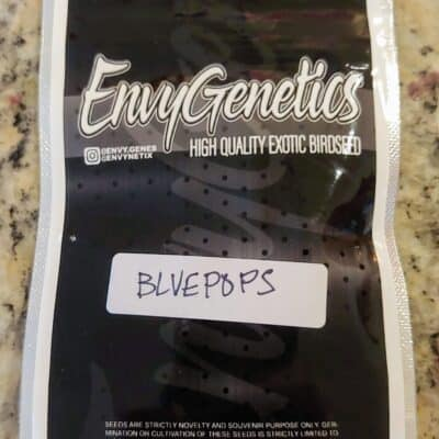 ENVY_GENETICS_BLUEPOPS_A_LUSCIOUS_GENETICS
