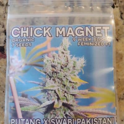 MASS_MEDICAL_STRAINS_CHICK_MAGNET_LUSCIOUS_GENETICS