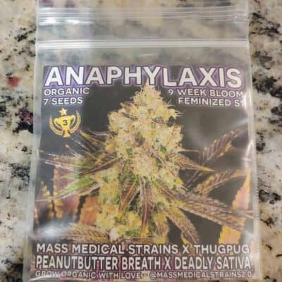 MASS_MEDICAL_STRAINS_ANAPHYLAXIS_LUSCIOUS_GENETICS