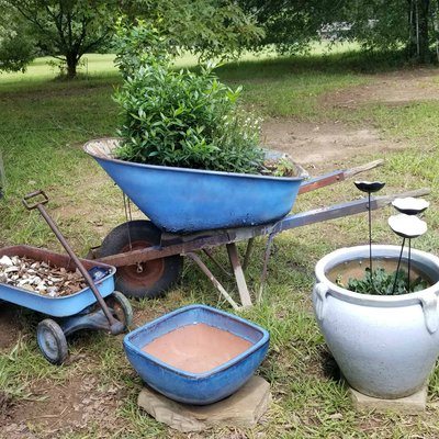 Update your Garden on a Budget