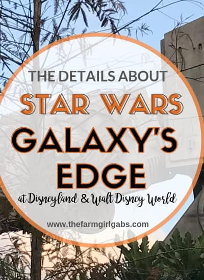 Everything In Star Wars Land - A Galaxy's Edge Overview 4