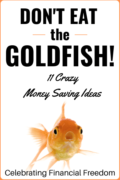 Don't Eat the Goldfish- 11 Crazy Money Saving Ideas