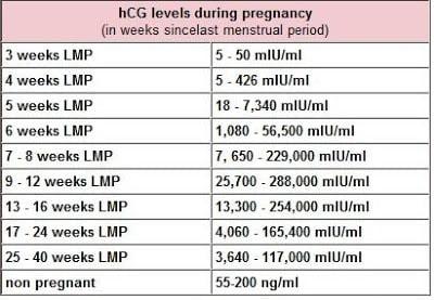 HCG-levels | American Pregnancy Association