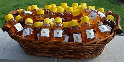 How to bottle honey in cute containers. Wildflower Honey Bear - Artisan Honey from Carolina Honeybees Farm