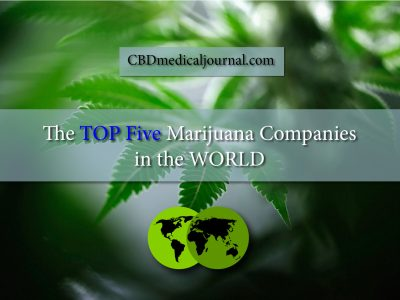 FIVE of the Largest & Most Important Marijuana Companies in the World
