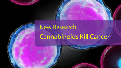 New Research: Cannabinoids Kill Cancer