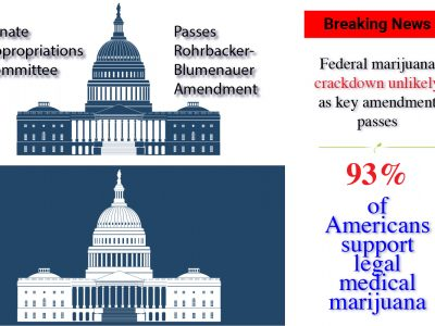 No Marijuana Crackdown | Senators Extend Federal Provisions