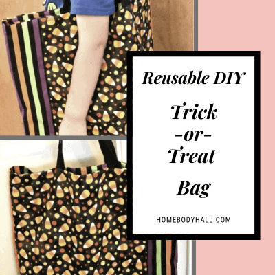 Reusable DIY Trick-or-Treat Bag