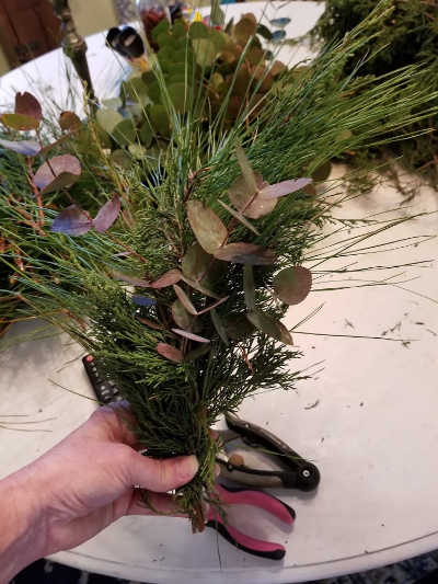 hand holding a bundle of greenery made up of cedar, eucalyptus and pine for evergreen wreath