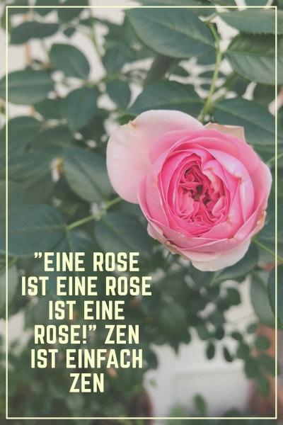 Rose Zen Meditation