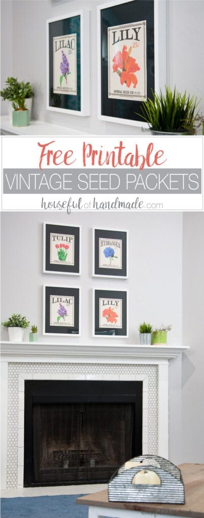 Create the perfect spring decor with these free vintage seed packet printables. Four of your favorite flowers turned into vintage inspired art that you can print and display today! Housefulofhandmade.com | Free printable | Vintage Seed Packet | Seed Packet Art | Flower Art | Spring Mantle Ideas | Farmhouse Decor | Easy Decor | Home Decor