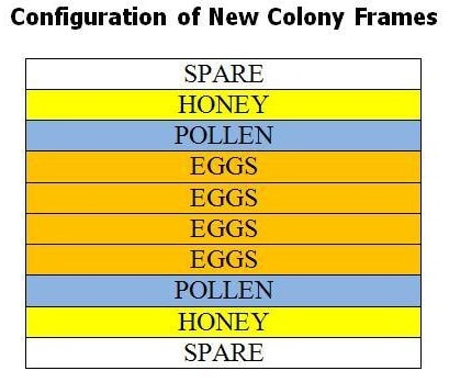 Proper Beehive Configuration