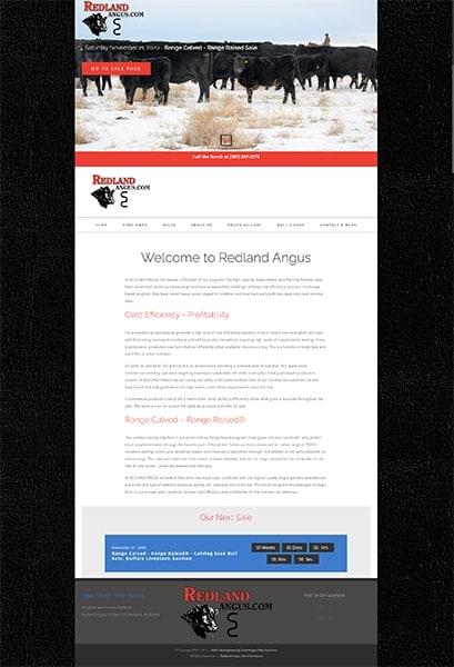Redland Angus