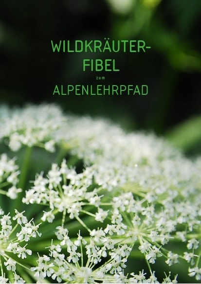 Wildkraeuter Fibel