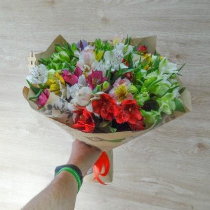 Альстромерии разных цветов