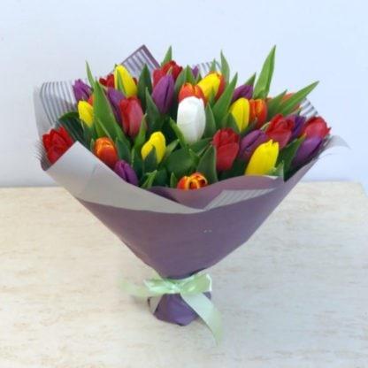 35 тюльпанов разных цветов
